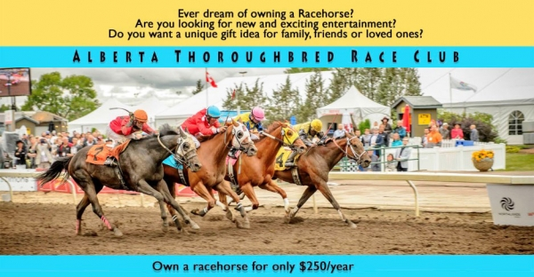 Alberta Thoroughbred Race Club - own a racehorse for $250/yr