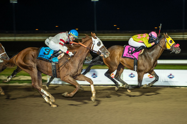 Real Grace leading the pack at Century Mile in the 91st Canadian Derby on Sunday