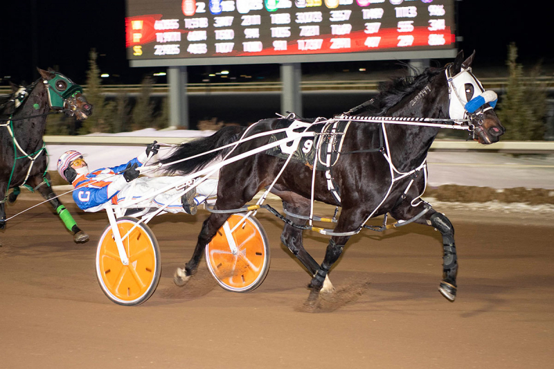 Major Custard, driven by Brandon Campbell, paid $3.30 to win in the Western Canada Pacing Derby at Century Mile