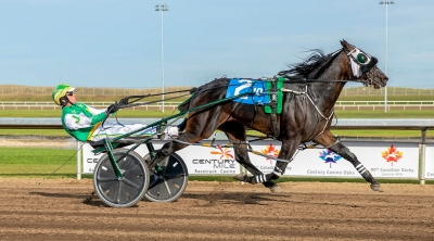 Kneedeep N Custard in the Western Canada Pacing Derby at Century Mile in September 2019