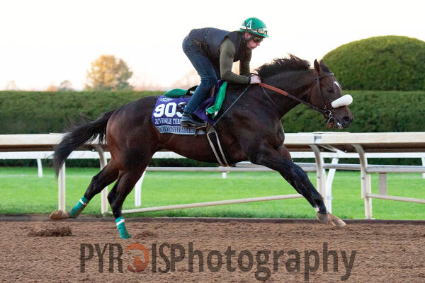 Bodenheimer working out at Keeneland